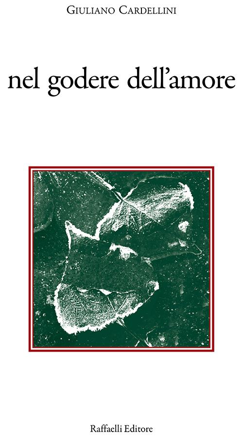 Libro Copertina nel godere dell'amore